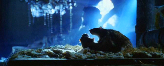 Every film needs a shot of two rats copulating.