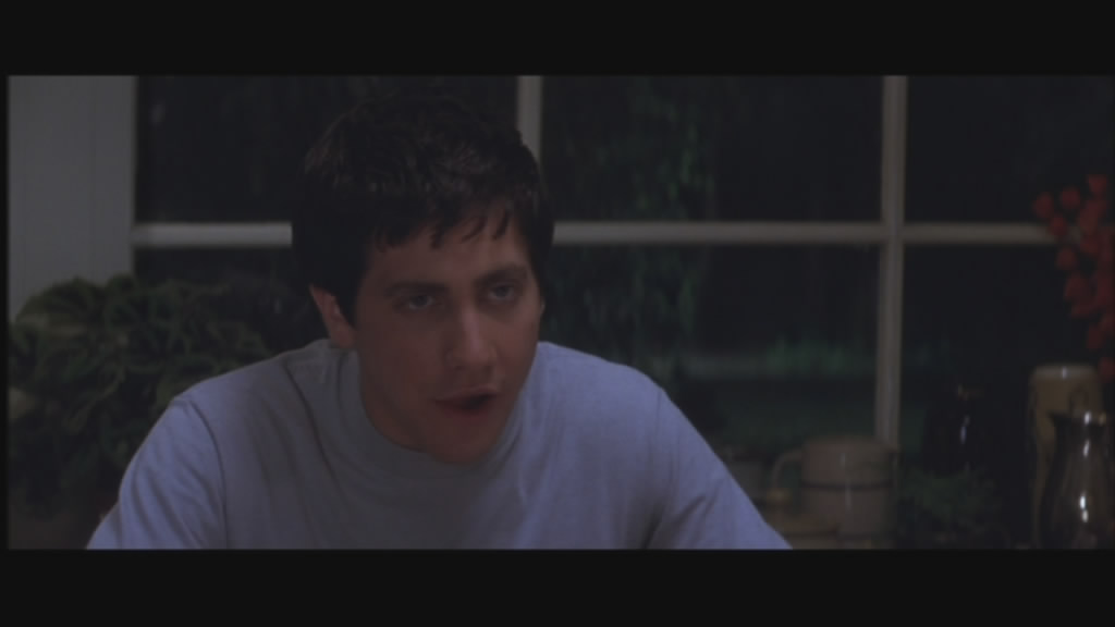 Jake Gyllenhall plays Donnie, a troubled young teen.