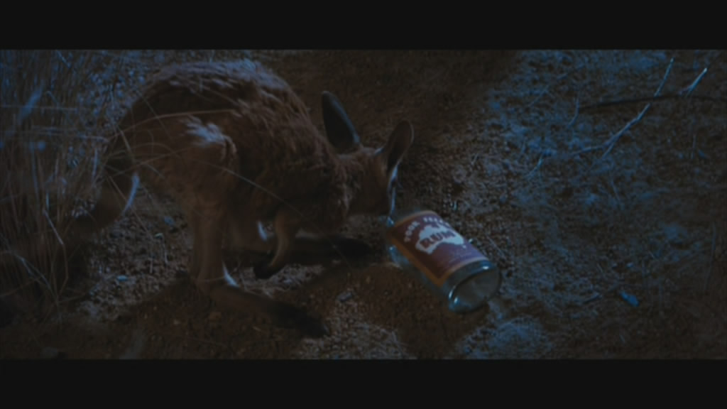 Even the animals in Australia like to drink.