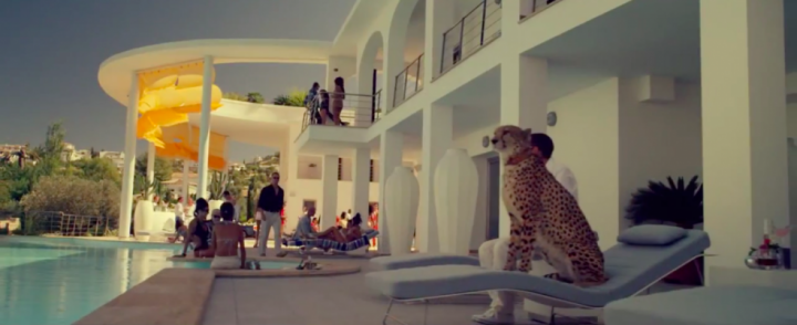 Like you've never invited a cheetah to a party before....