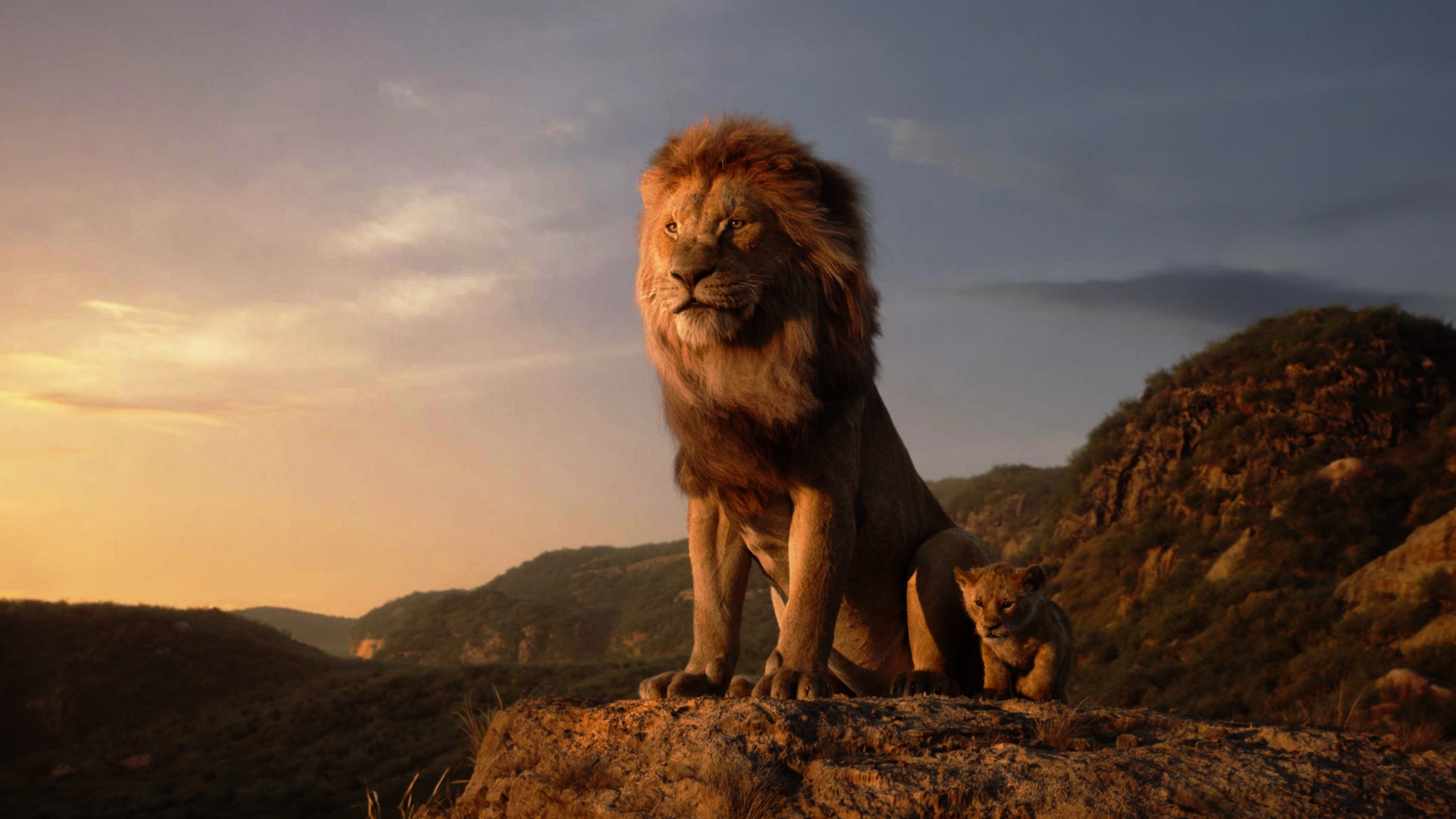 Movie Review - Lion King, The (2019)