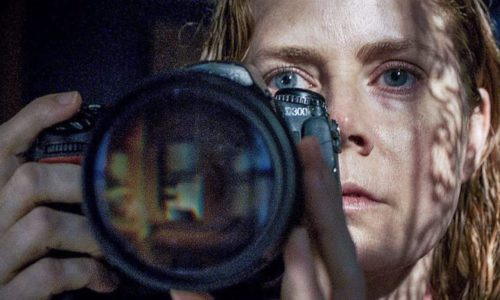 Movie Review – Woman In The Window, The